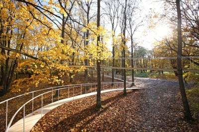 architecture organi bridge footpath path bridge pedestrian forest woods nature landscape architect deisgn