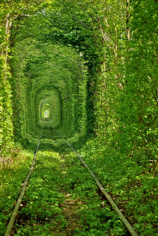 naked, nude, crawling, nature, outside, subway, green, trees, love tunnel tunnel of love ukraine