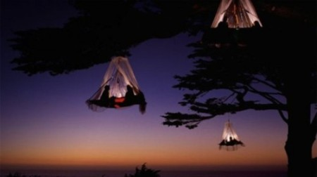 tent, hanging, tree, camping, sleeping, living, suspended, cable