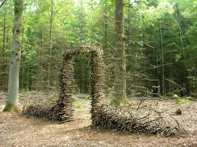 gravity, Cornelia, art, photography, forest, green, land art, installation