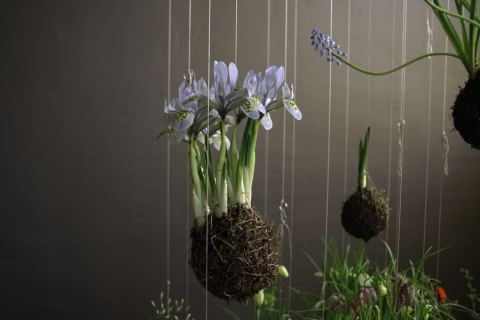 String Gardens - jardin suspendu - Fedor Van der Valk nature gardening photography hanging gardens haning plants flowers strings amazing cute