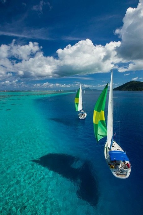 small 'floating' boats on the ocean sea sky water holiday summer paradise sailing ship sail colour water beautiful rif nature holiday destination diving