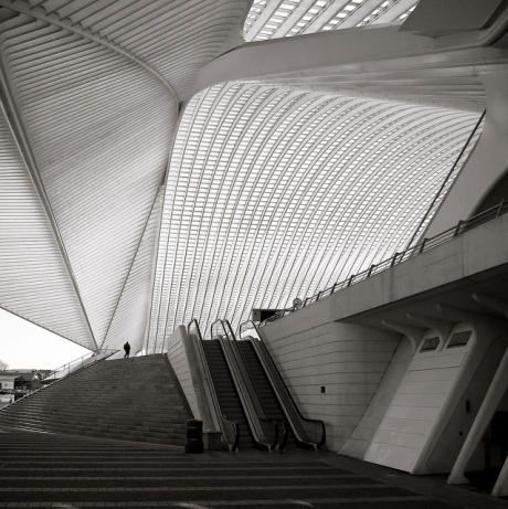 cover, Calatrava, architecture, roof, concrete, steel , structure, engineering, design, black and white photography, architects, light, escalators, organic