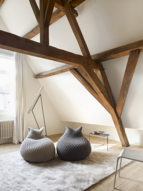 living room interior design architecture modern decoration chair photography photo carpet furniture design