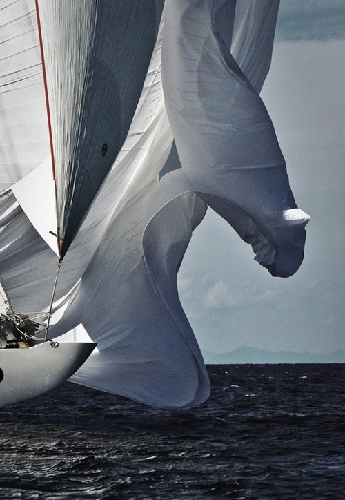 sail sailing yacht wind ocean water photography waves photo image cup travel adventure