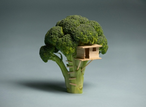 small world Sustainable Living 'Broccoli House' sustainability art architecture tree house miniture sculpture vegetable photography photo image tumblr