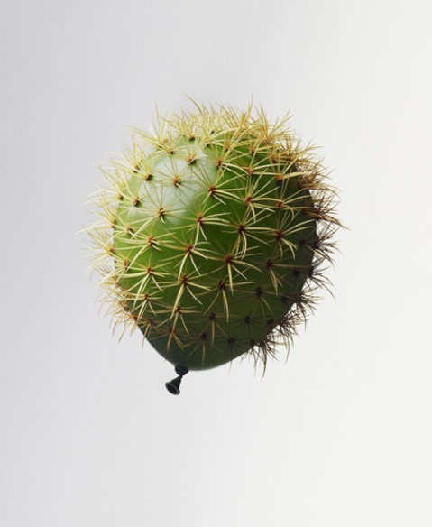 cactus ballon art plant sculpture fun cool cactus shape exploding ballon needles danger fun photography blog wordpress explosion exploding bomb image photo