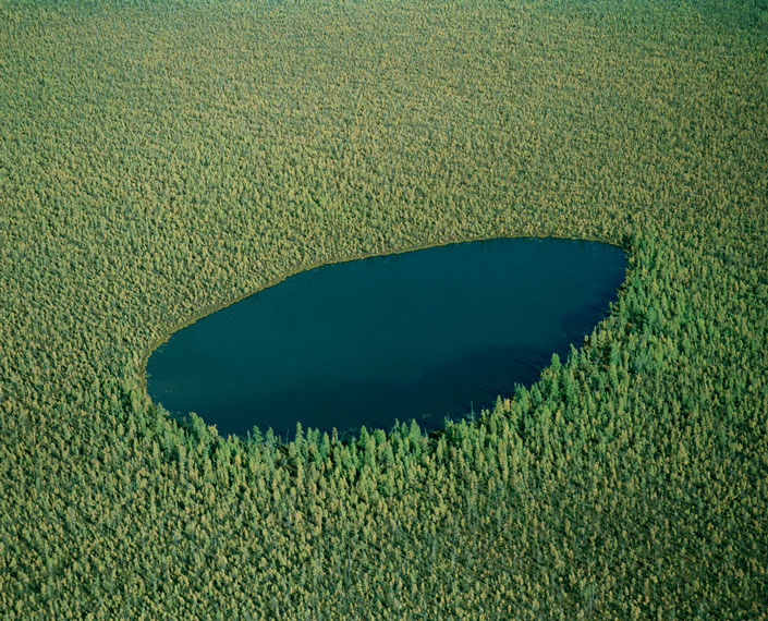 Amazon rain forest aerial view water drop shaped lake in the forest of treets nature landscape photography best photograpyh tumblr blog