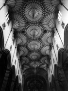 vaulted church roof organic architecture black and white vintage photography blog relgion gothic ceiling structure beautiful organic chruch roof detail