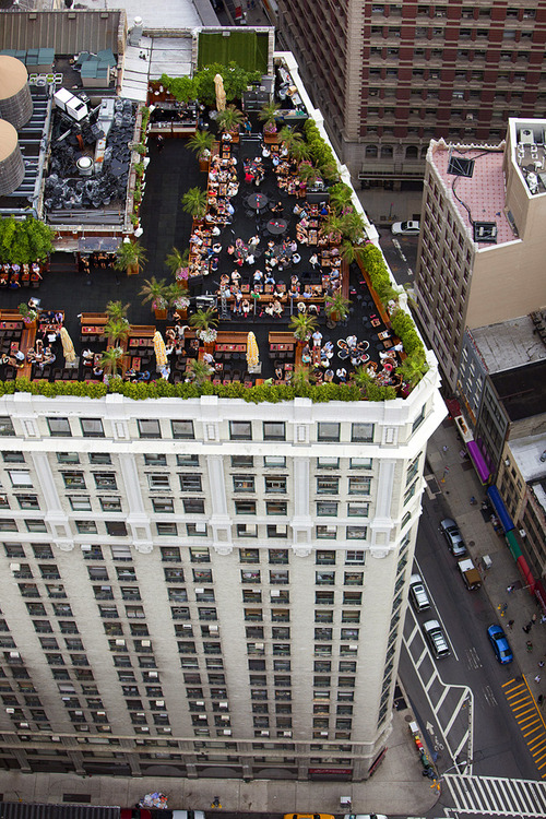 New York Manhattan City USA United States 5th Avenue Chelsea rooftop garden restaurant building architecture high rise buildings urban street facade new york vernacular traditional architect view skyline aerial view
