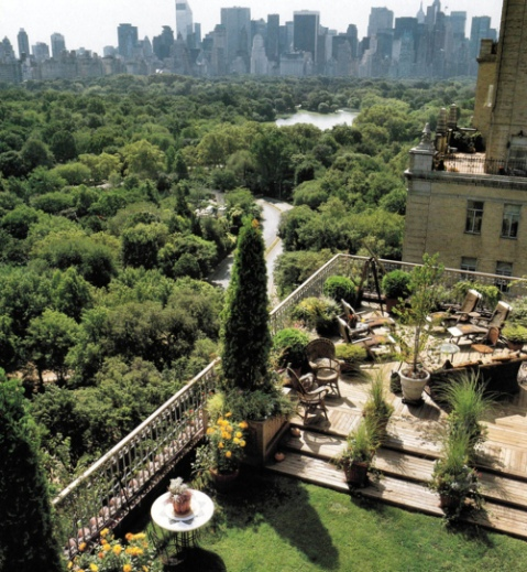Photograph of a beautiful green roof terrace overlooking central park, Manhattan, New York City landscape beautiful photography usa