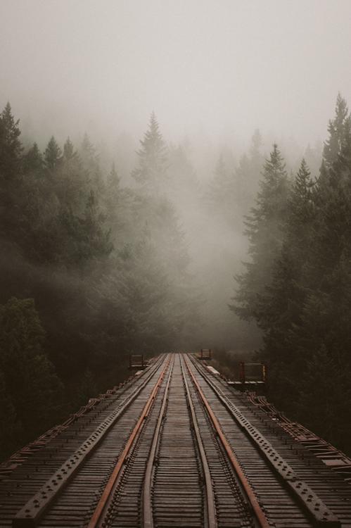 rail tracks forest train old train lines wood bridge fog nature landscape beautiful lonely landscape photography best blog