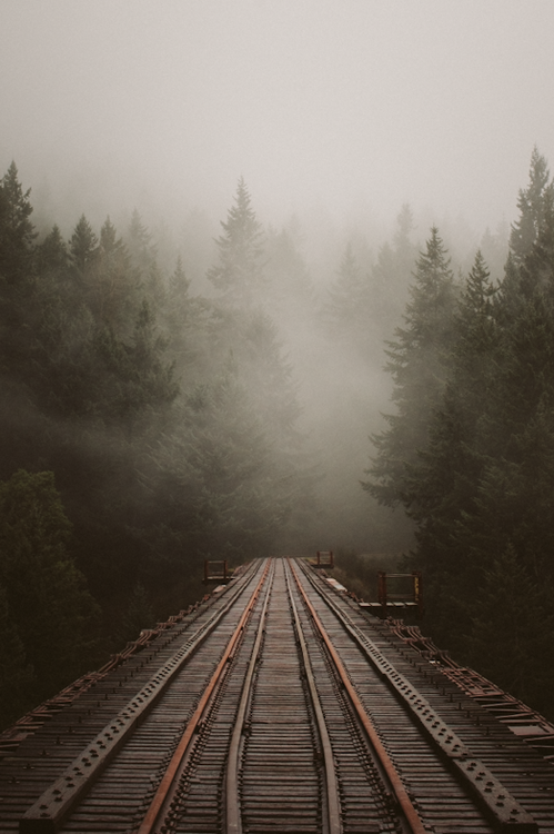 rail tracks forest train old train lines wood bridge fog nature landscape beautiful lonely landscape photography best blog