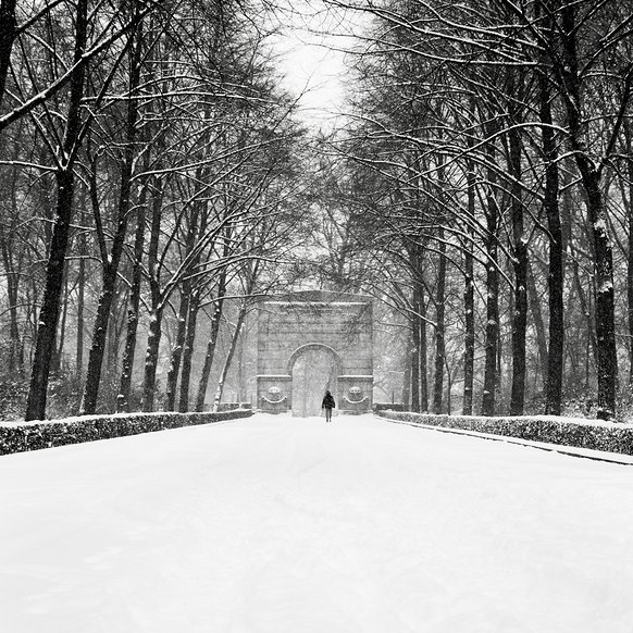 ronny behnert russian memorial berlin black and white vintage photography photoshop lightroom editing snow winter landscape tree nature beautiful serene calm