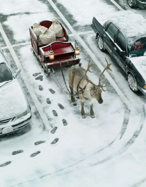 santa claus sled christmas parking car park lot christmas 2012 funny photography