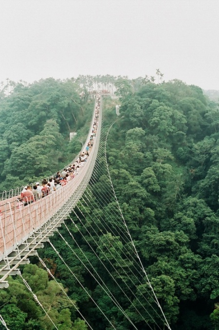 cable foot bridge suspension travel forest tropical holiday sight seeing lightweight bridge hanging in air high