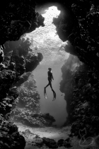 diving black and white under water photography underwater coral reef holiday travel