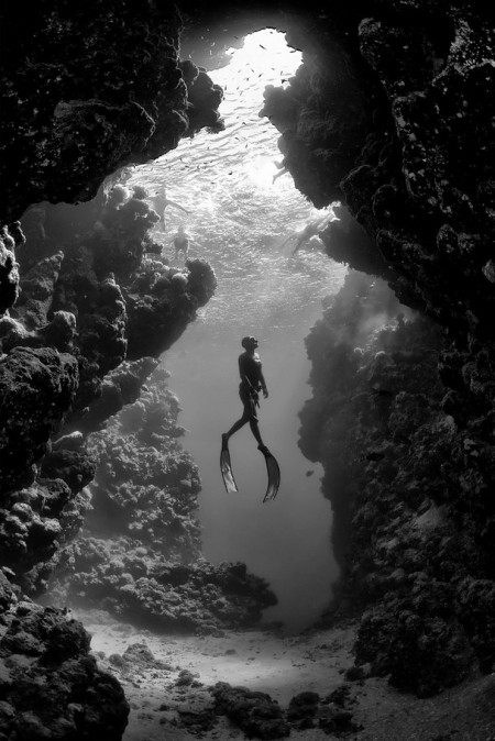 underwater diving photography ocean black and white monochrome Record Italian freediver Linda Paganelli, ascending in front of one of the caves in the Ras Mohammed National Park just south of Sharm el-Sheikh.  This cave when viewed from inside revealed the silhouette of lady from the Victorian era. Look closely...she is wearing a wide dress, a hat and has one arm on her hip (the other holding a purse).  Ras Mohammad national park is considered to be one of the best dive locations in the world. It is situated at the southern most tip of the Sinai Peninsula, with the Gulf of Suez on the west and the Gulf of Aqaba to the east.