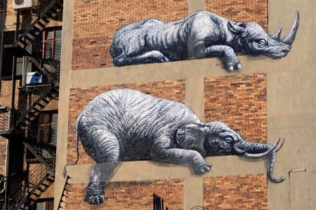 street art graffiti painting roa animals african stacked animals artist cool street graffiti spraying johannesburg