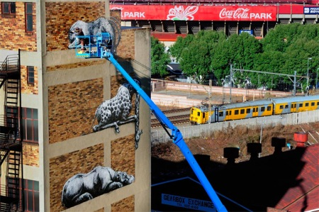 street art graffiti painting roa animals african stacked animals artist cool street graffiti spraying johannesburg