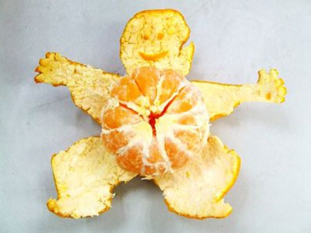 orange cat animal sculpture funny cute orange peel fruit art