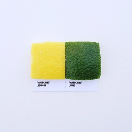 pantone breakfast design color food pair artist designer pantone color scheme numbers tones food photography