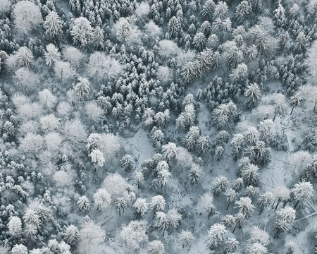 winter snow landscape nature photography aerial bird eye view romantic beautiful camera from above