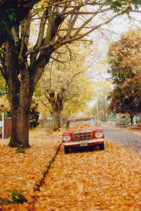 autumn photograph leaves nature landscape vintage car film camera dry leaves street