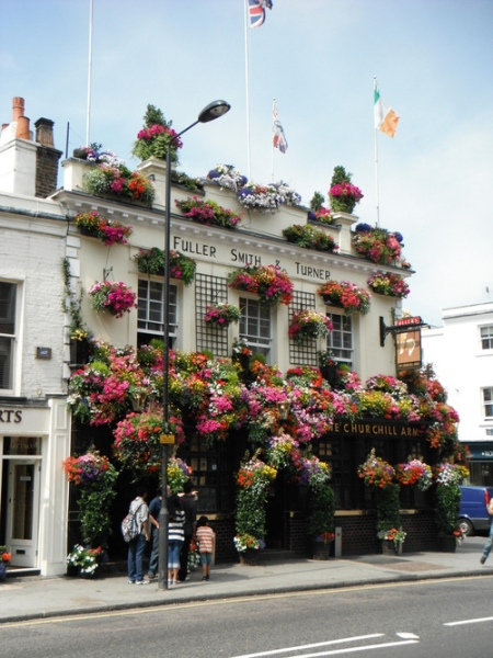 flower decoration georgian townhouse house terrace london england flower pots spring facade decoratino green pub
