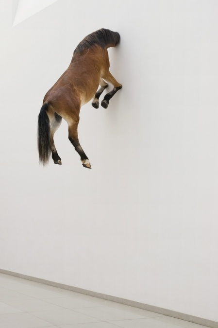 horse art sculpture satirical wall head wall artist maurizio cattelan exhibition guggenheim