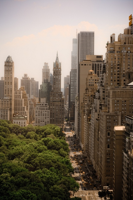 Garden city hovercraftdoggy for Central park apartment new york