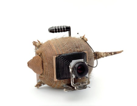 CAMERA COLLECTION BY TAIYO ONORATO & NICO KREBS (6)
