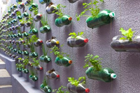vertical-1 A transformation of an exterior wall in a small house outside Sao Paolo, by Rosenbaum. The wall has changed into a small vertical garden where series of cascading plastic bottles are hanging through strings.The plastic containers have been reused as planters filled with soil for different kinds of flowers, and medicinal herbs.