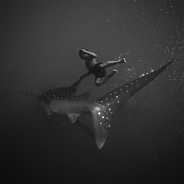 Black and White Underwater Photography by Hengki Koentjoro (1)