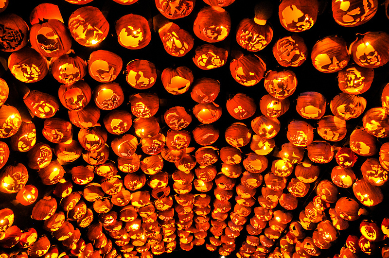 Killer Pumpkin Arrangements at the Great Jack O'Lantern Blaze (4)