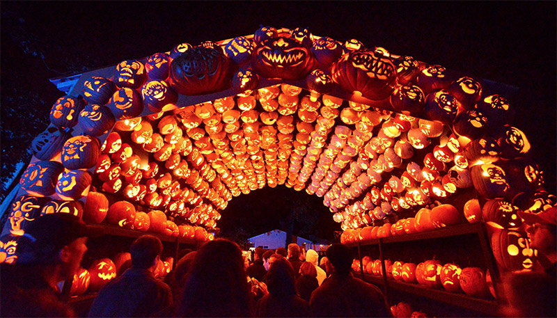 Killer Pumpkin Arrangements at the Great Jack O'Lantern Blaze (5)