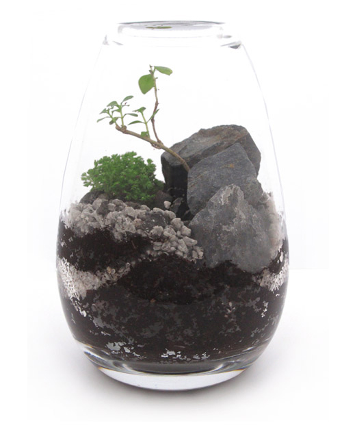 Beautiful miniature landscapes created within these bespoke terrariums by New York based Jeffrey James Modern