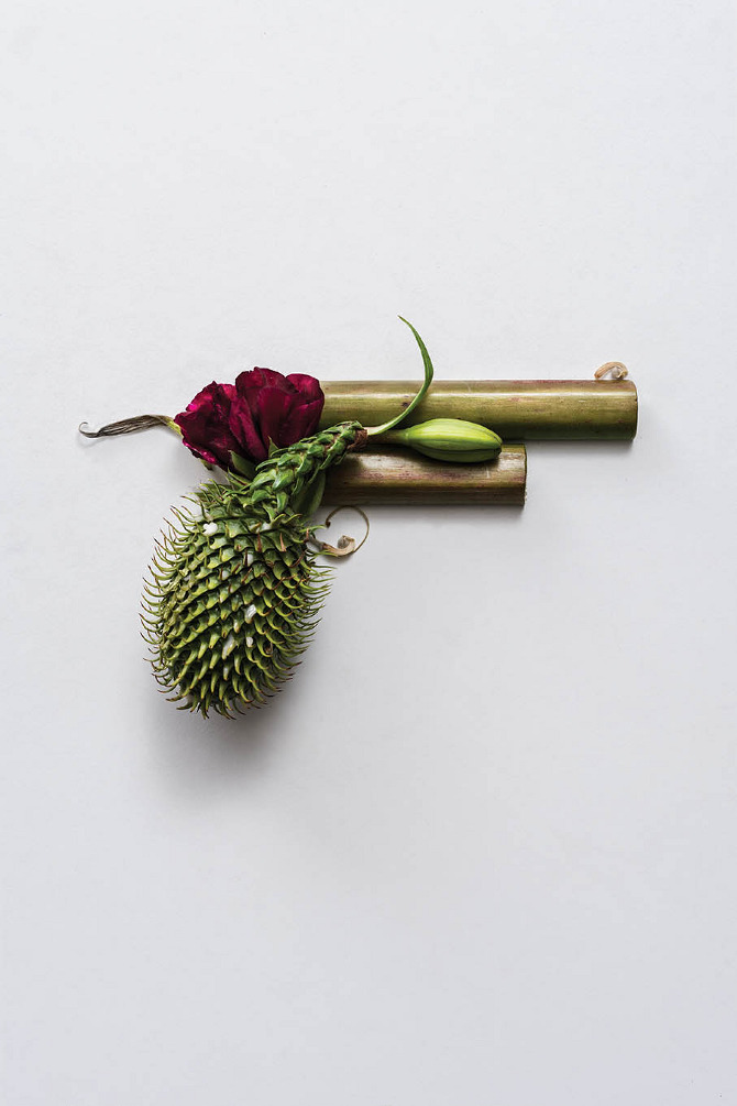 Harmless Weapons Made of Plants by Sonia Rentsch (1)