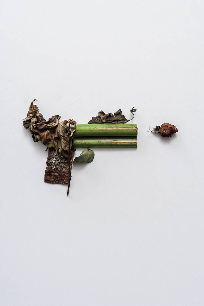 Harmless Weapons Made of Plants by Sonia Rentsch (2)