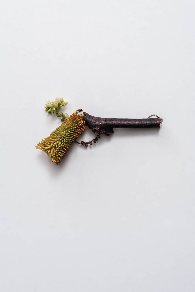 Harmless Weapons Made of Plants by Sonia Rentsch (5)
