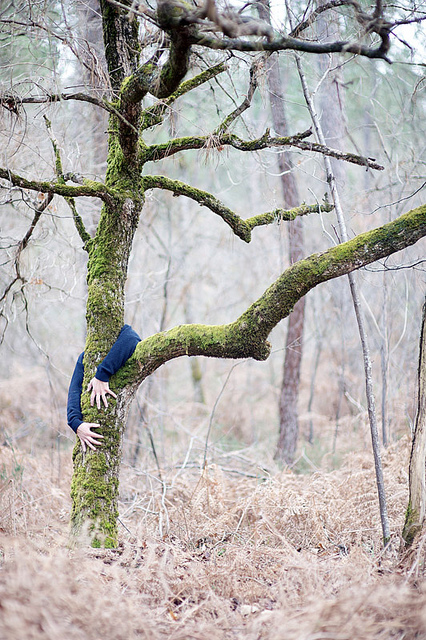 Self Portraits of a different kind - innovative and fun images of French photographer Olivier M. hiding behind trees and other objects (with a bit of digital help). See more of his work on flickr.