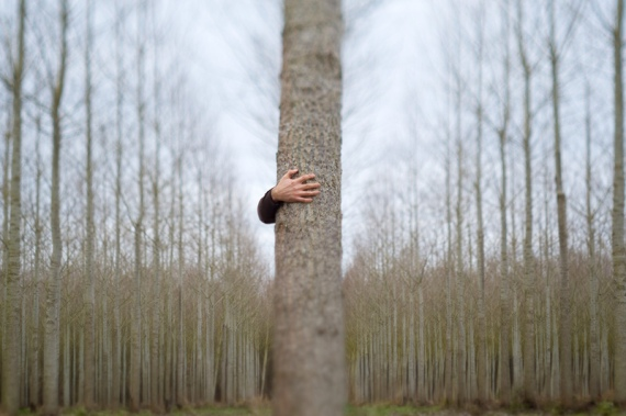 OSelf Portraits of a different kind - innovative and fun images of French photographer Olivier M. hiding behind trees and other objects (with a bit of digital help). See more of his work on flickr.