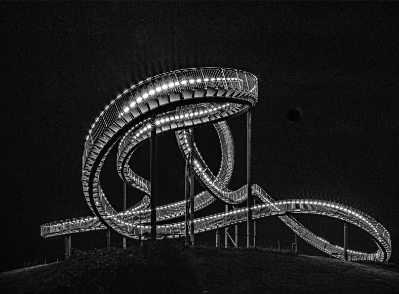 Tiger and Turtle by Heike Mutter and Ulrich Genth - photos by Manuela Martin (3)