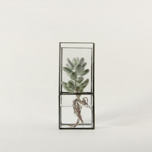 Fantastic minimalist hydroponic terrariums from Japan, designed by 10¹² Terra