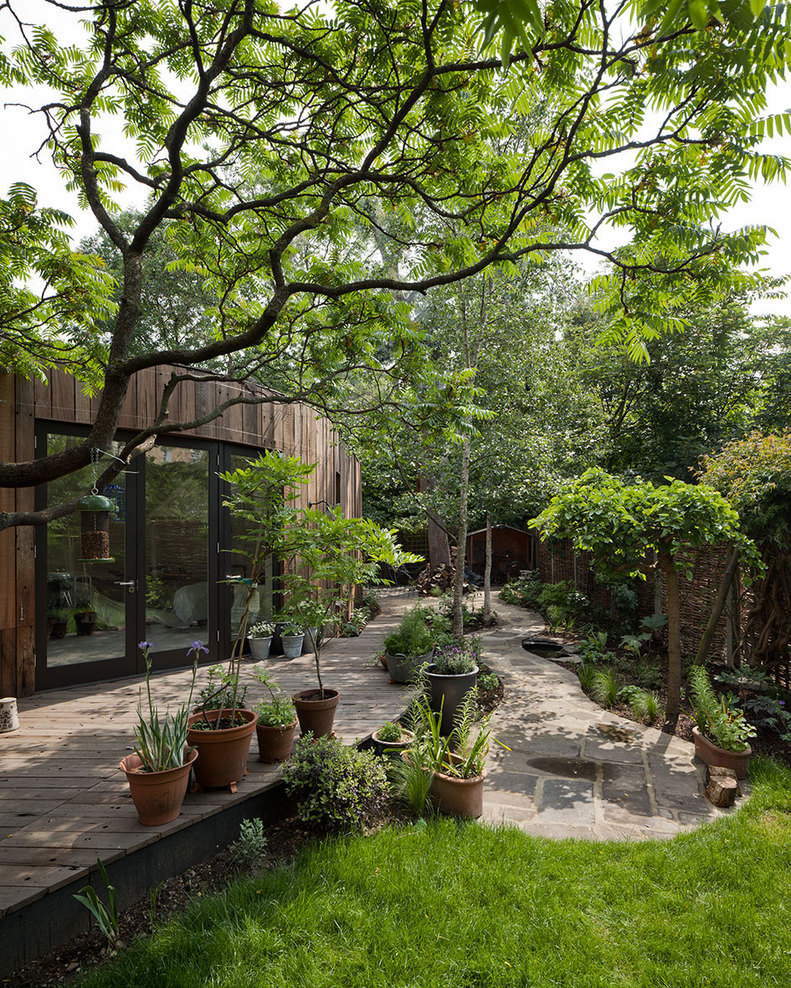 Tree House by 6a architects (5)