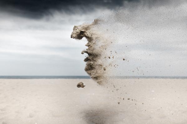 Sand Creatures  Claire Droppert (2)