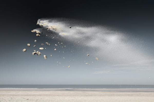 Sand Creatures  Claire Droppert (3)