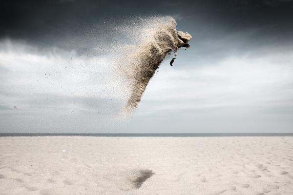 Sand Creatures  Claire Droppert