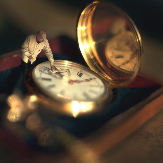 fiddleoak– Miniature Photography (3)