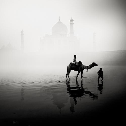 India by Josef Hoflehner (3)